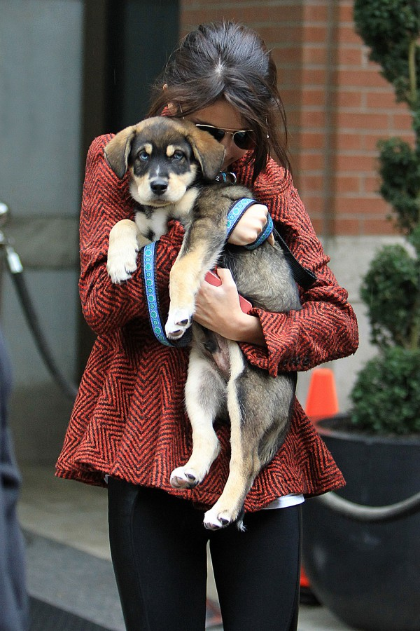 Selena Gomez Walking with Her Puppy