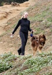 Amanda Seyfried Walks Her Dog in Hollywood Hills