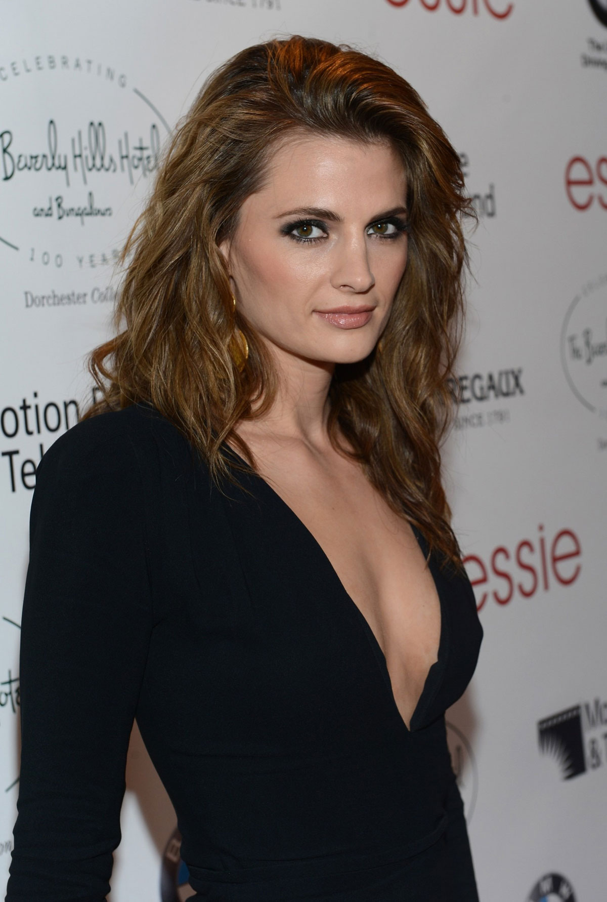 STANA KATIC at Intimate Cocktail and Dinner at Beverly