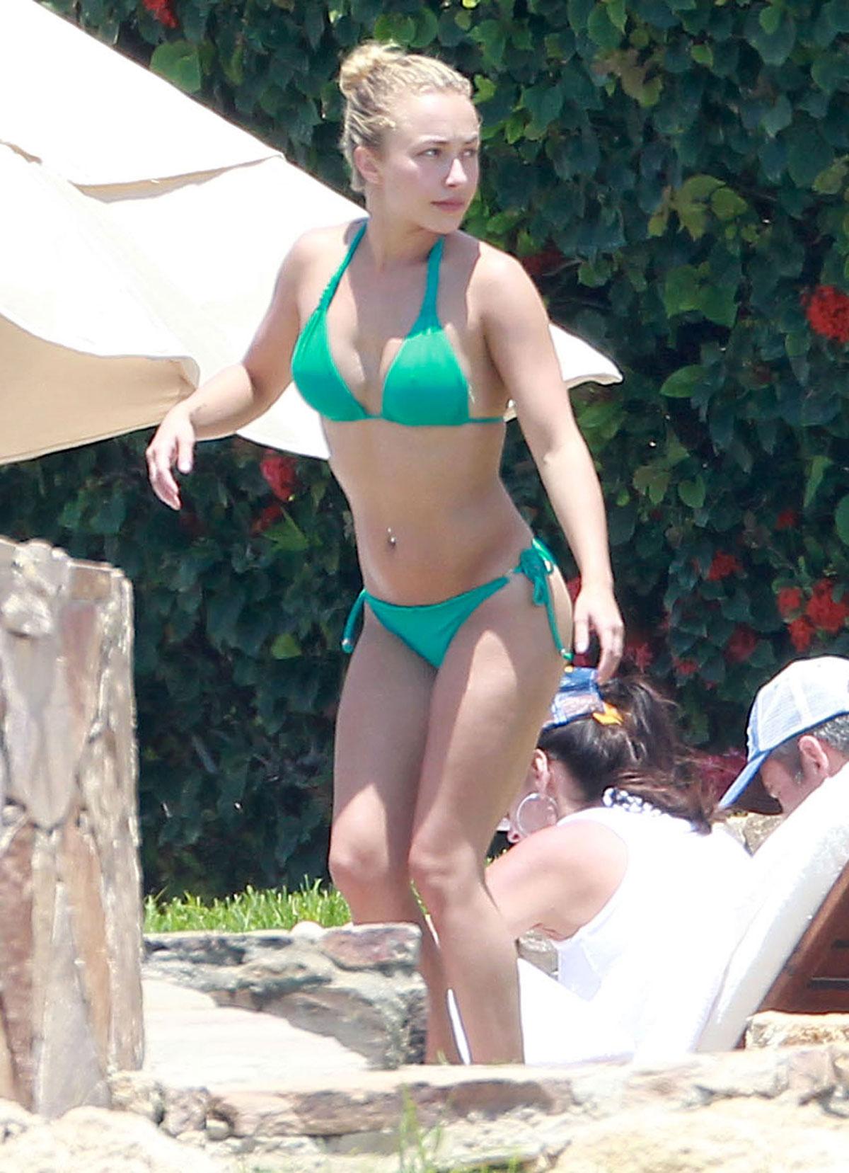 hayden panettiere in bikini - hawtcelebs