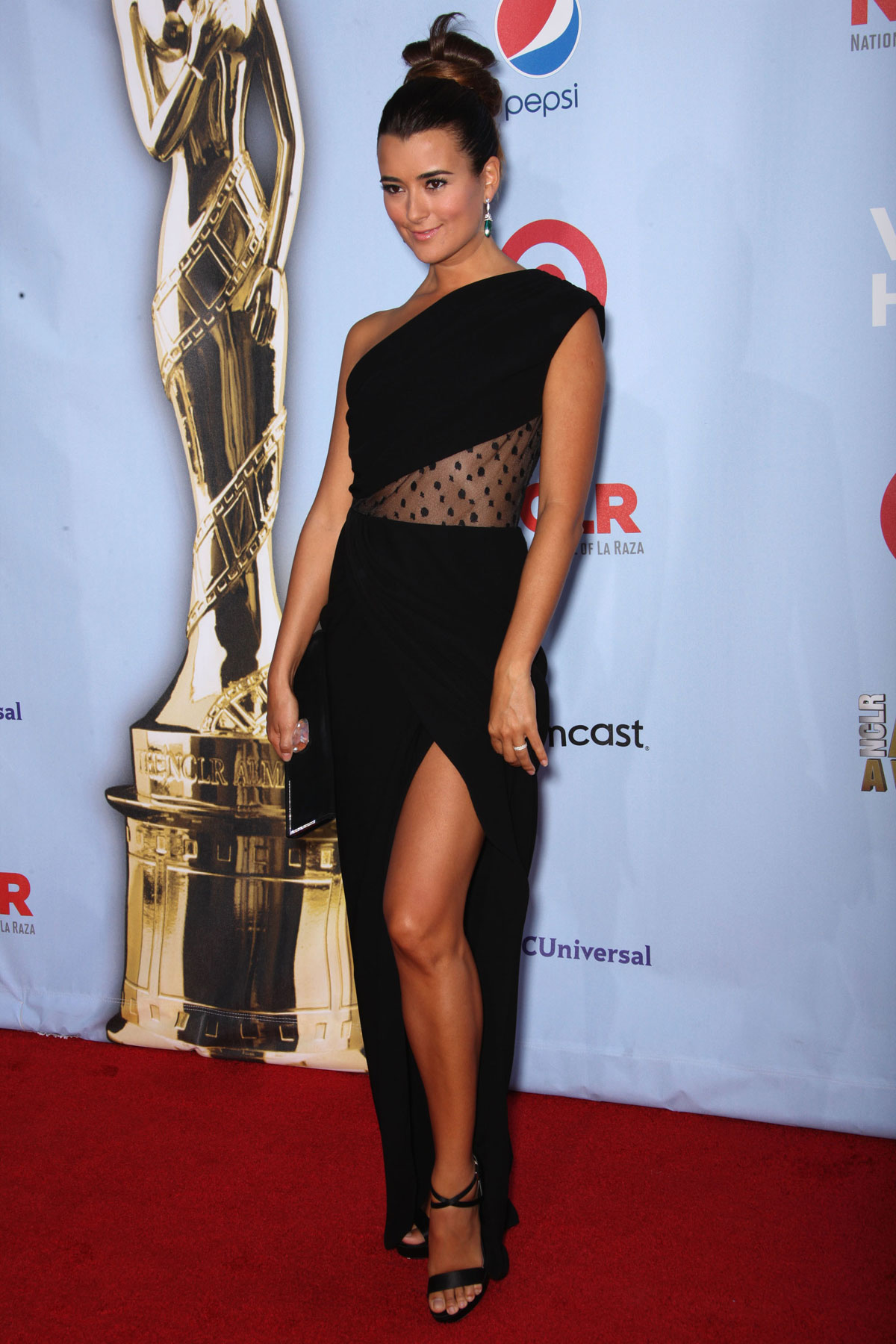 COTE De PABLO at 2012 NCLR ALMA Awards in Pasadena