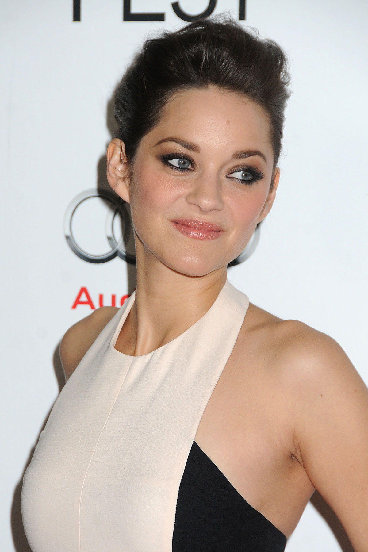 Marion Cotillard Celebrity Biography, Photos, Videos, Movies ...