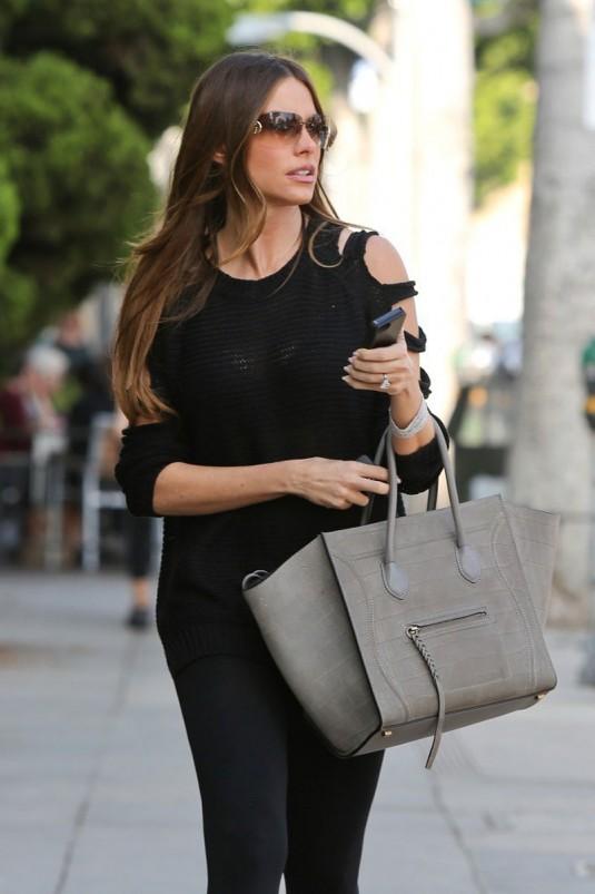 Celebrity bag: sofia vergara and