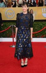Amanda Peet at 20th Annual Screen Actors Guild Awards in Los Angeles