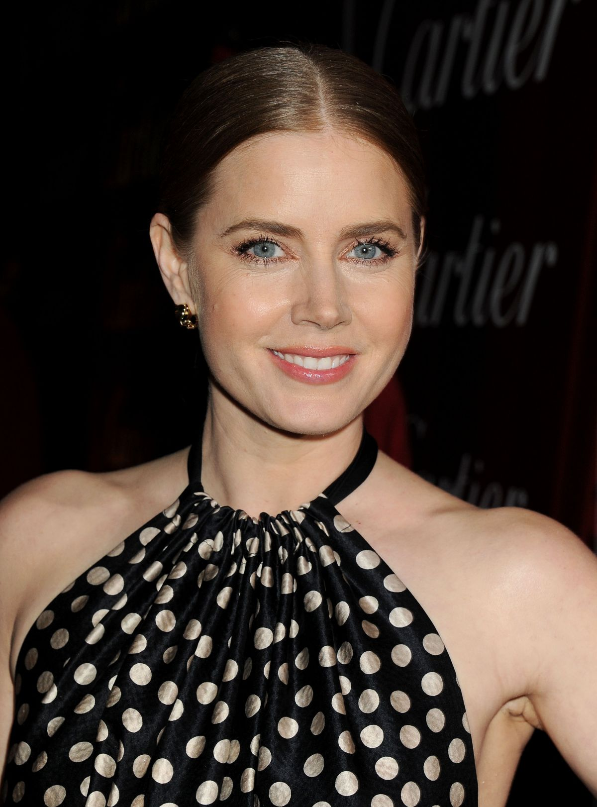 Julia Adams 2014 Amy Adams at 2014 Palm Springs