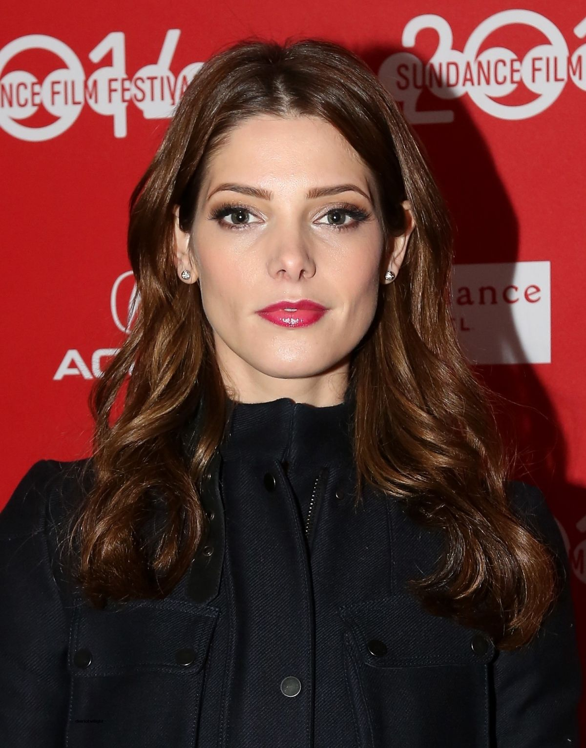 ASHLEY GREENE at Wish ...