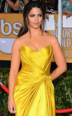 Camilla Alves at 20th Annual Screen Actors Guild Awards in Los Angeles