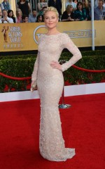Elisabeth Rohm at 20th Annual Screen Actors Guild Awards in Los Angeles