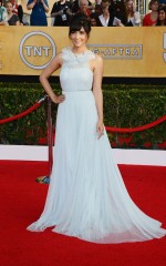 Hannah Simone at 20th Annual Screen Actors Guild Awards in Los Angeles