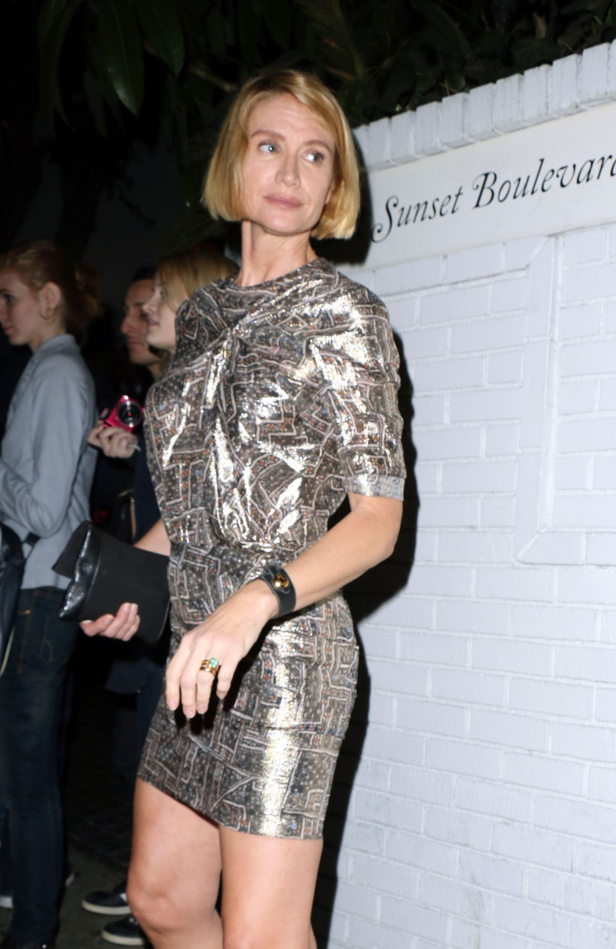 KELLY LYNCH at W Magazine Celebrates the Golden Globes in Los Angeles
