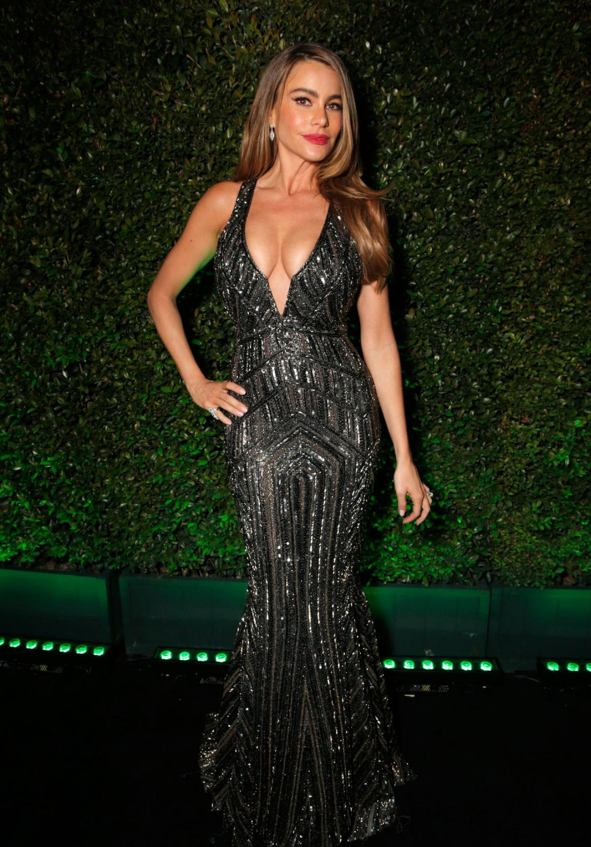 sofia vergara dating 2014 Sofia vergara is known for playing as well as a fragrance and jewelry collection in 2014 personal life sofia vergara was married to vergara began dating.