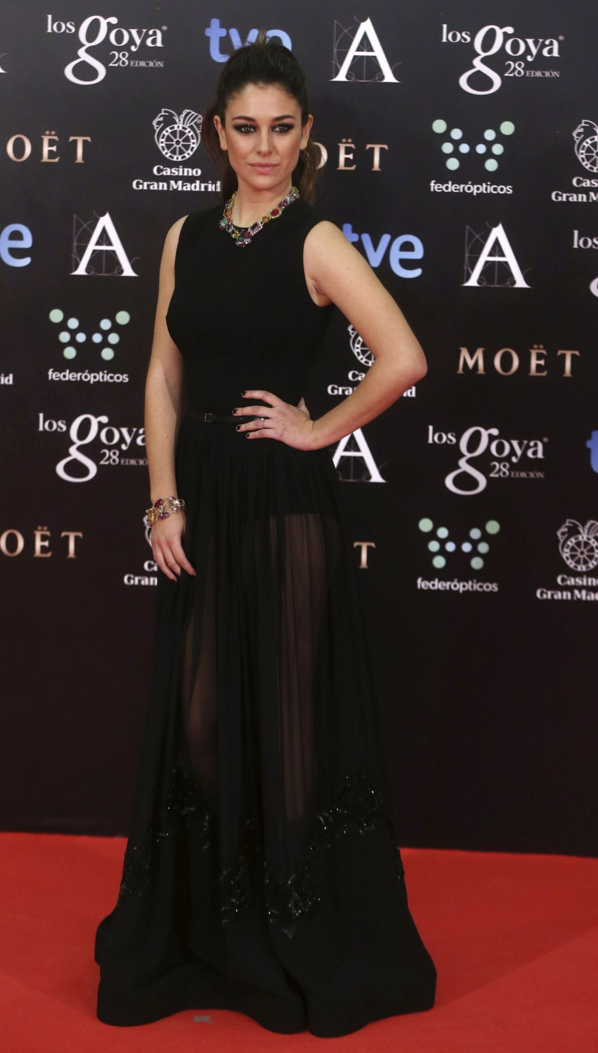 BLANCA SUAREZ at 2014 Goya Film Awards in Madrid