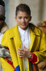ZENDAYA COLEMAN Out and About in New York