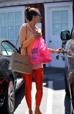 ALESSANDRA AMBROSIO Out for Shopping in Los Angeles