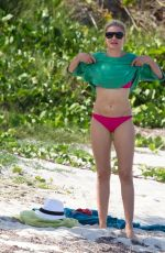 CAMERON DIAZ in Pink Bikini on the Beach in Caribbean