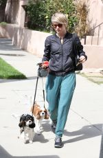 JULIANNE HOUGH Takes Her Dogs for a Walk in Los Angeles