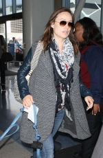 OLIVIA WILDE Arrives at LAX Airport in Los Angeles