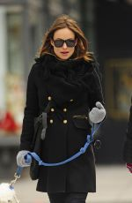 OLIVIA WILDE Out with Her Dog in New York