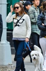 Pregnant OlLIVIA WILDE Having Lunch with a Friend in New York