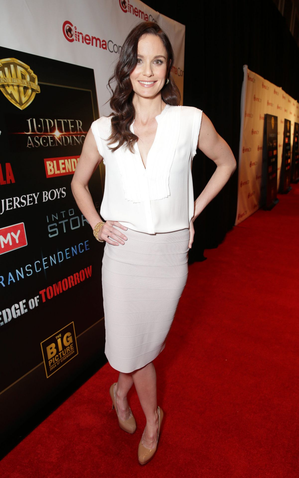 SARAH WAYNE CALLIES at 2014 Cinemacon - 196.1KB