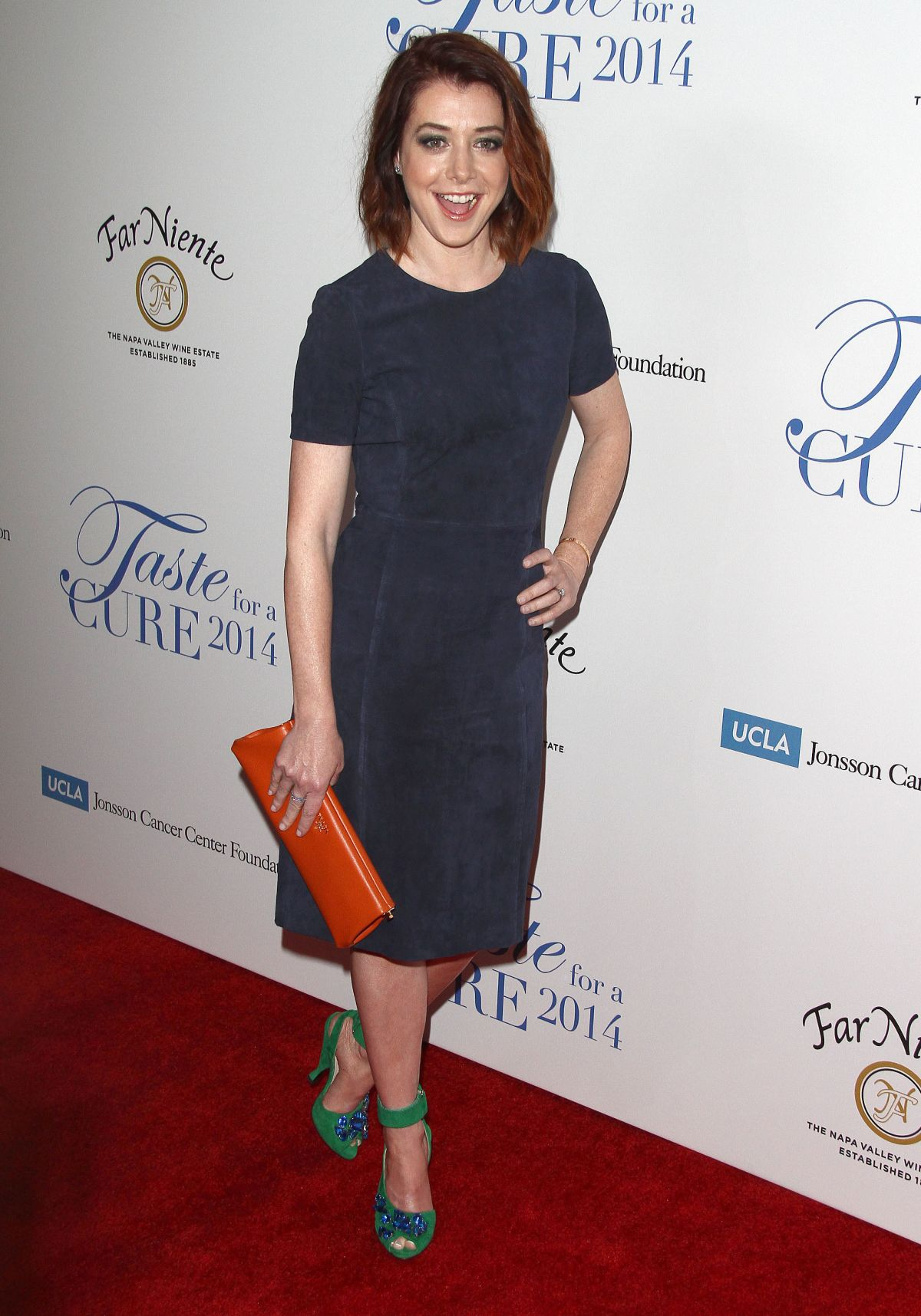 ALYSON HANNIGAN at Jonsson Cancer Center Foundation's Taste for a Cure