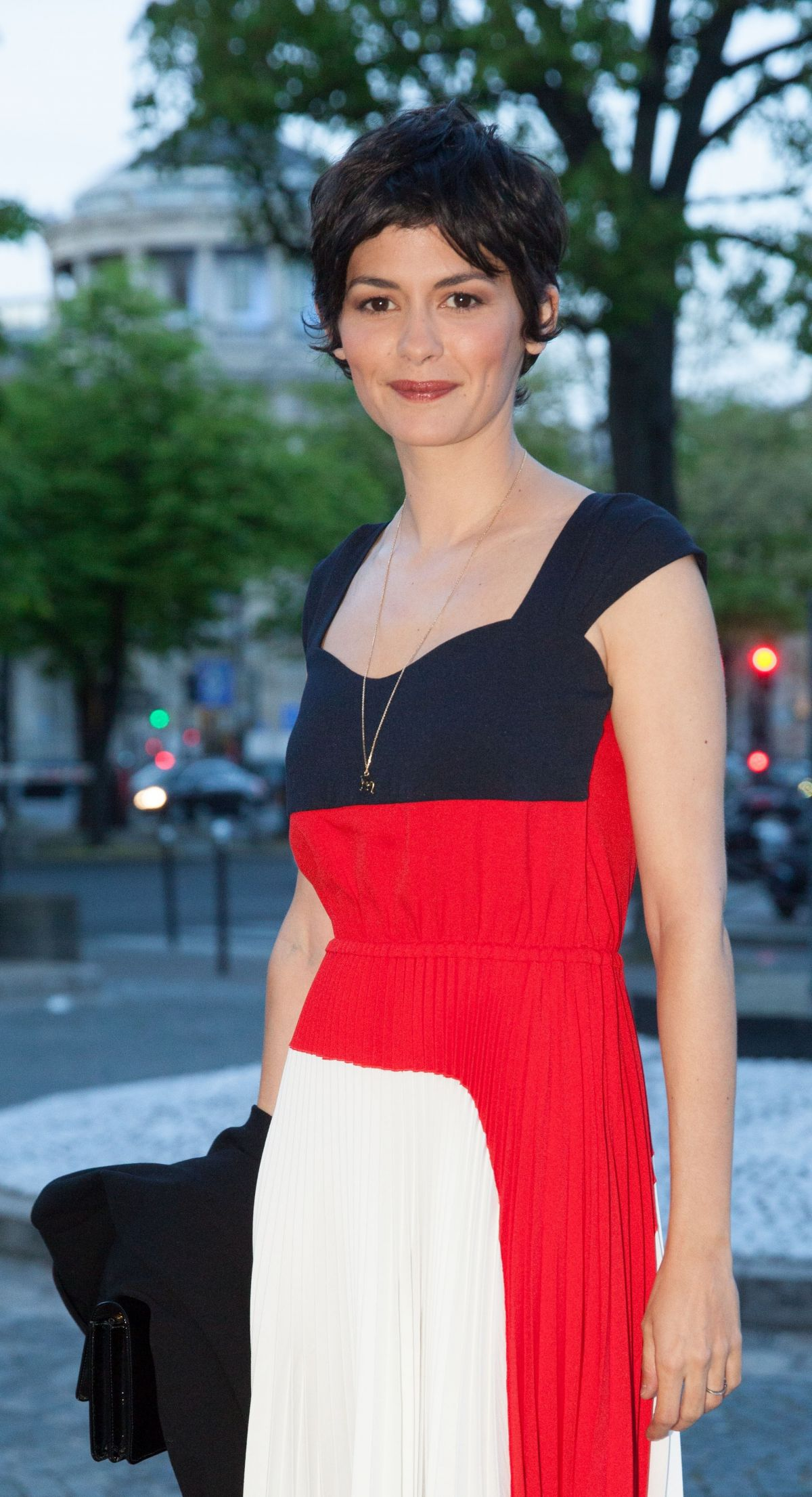 AUDREY TAUTOU at Economic and Social Board Diner in Pari