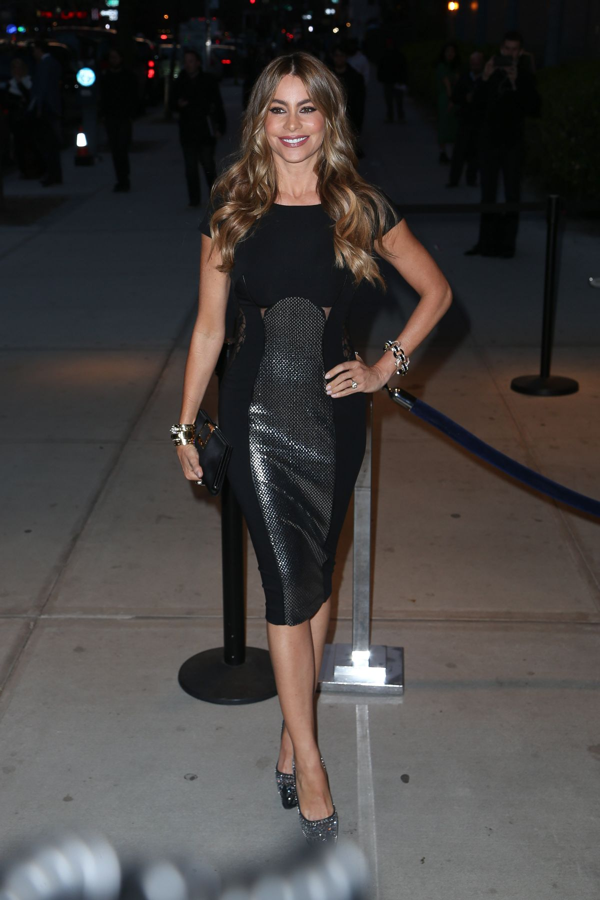 .imagetwist.com   yukikax 23 SOFIA VERGARA at Fading Gigolo Screening in New York