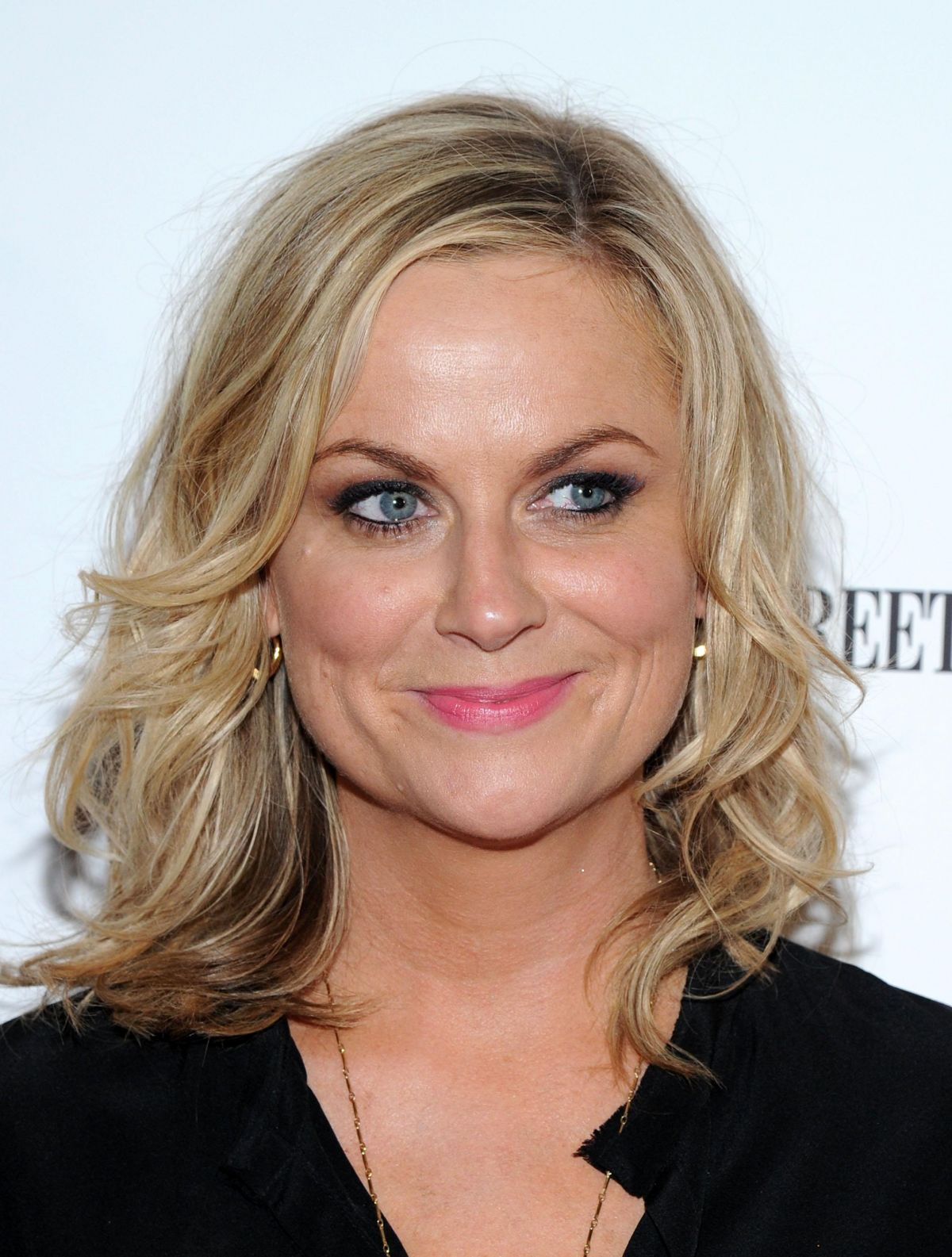 AMY POEHLER at They Came Together Screening in New York ...