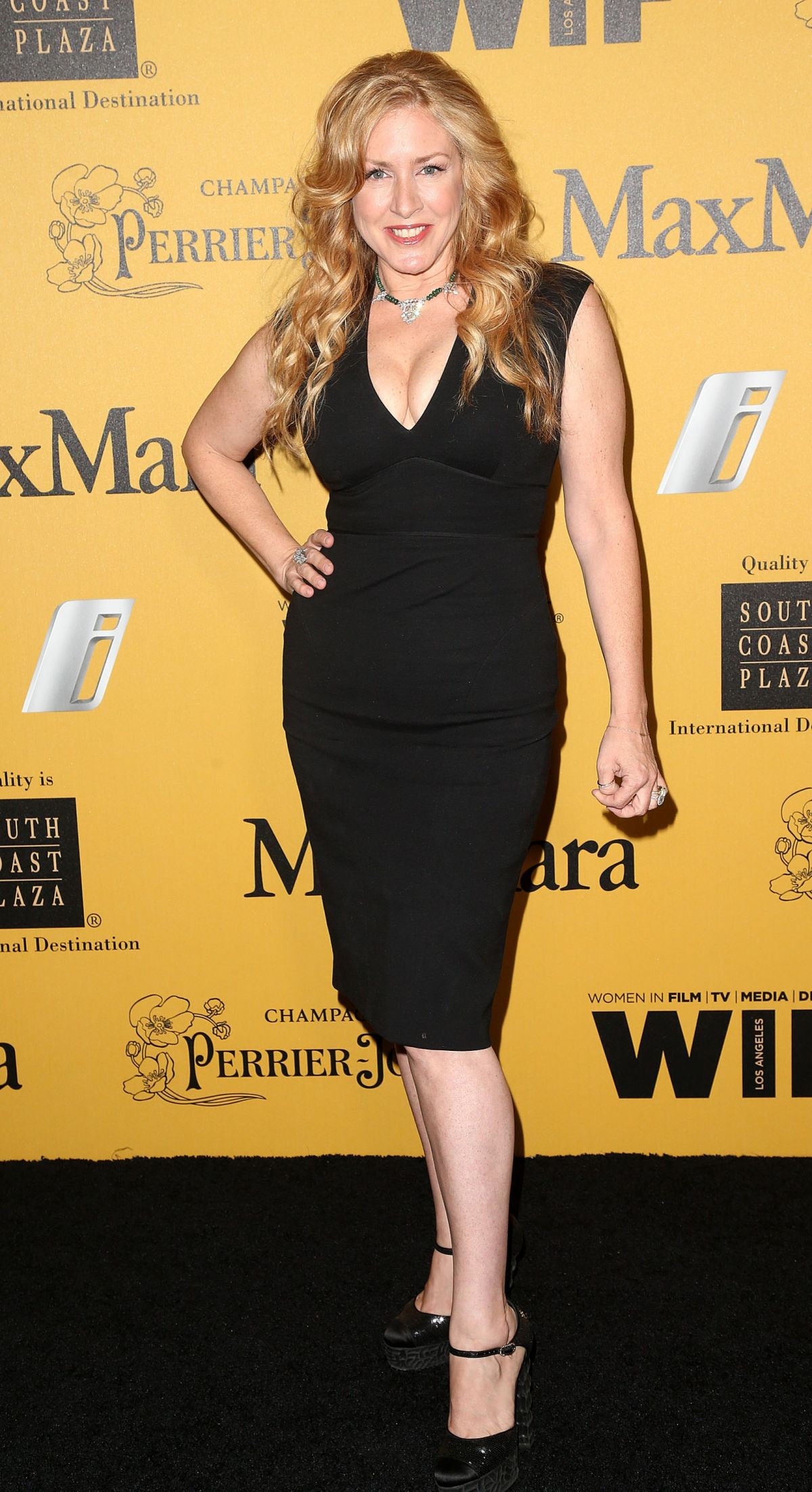 JOELY FISHER at Women in Film 2014 Crystal and Lucy Awards in Los Angeles