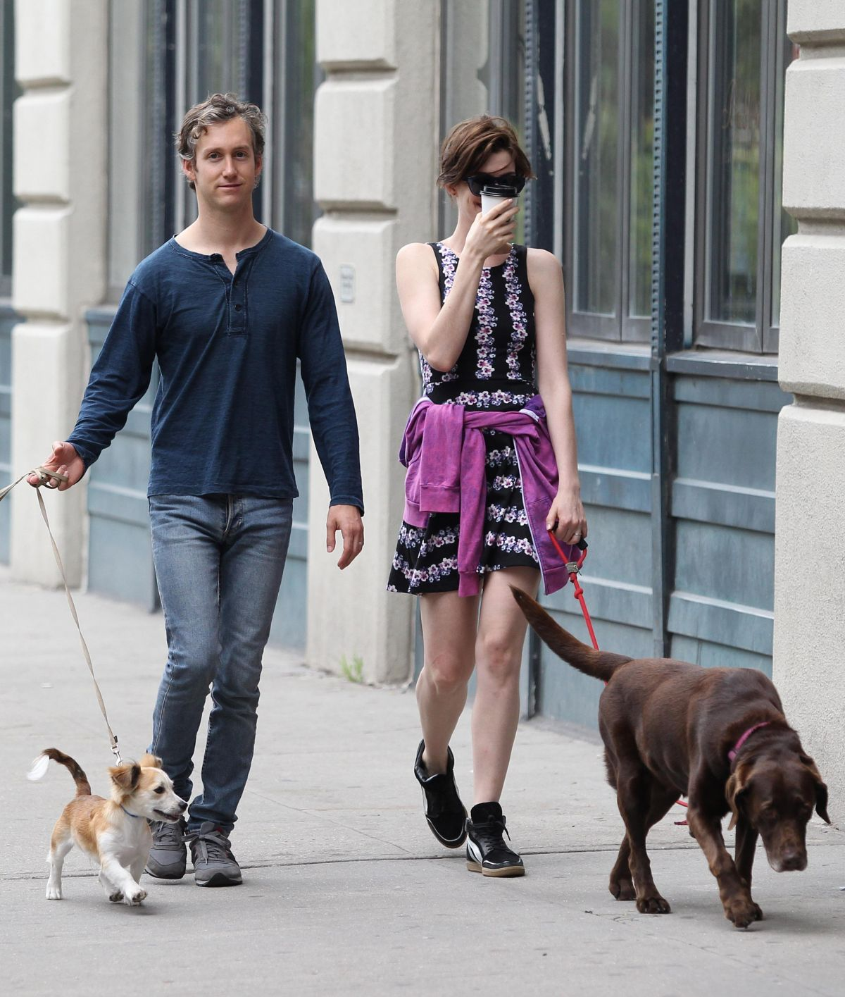 Anne Hathaway Spouse: ANNE HATHAWAY And Adam Shulman Walks Her Dogs Out In New