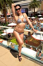 ADRIANNE CURRY in Bikini at Encore Beach Club in Las Vegas