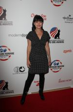 PAULEY PERRETTE at Hero Dog Awards in Beverly Hills