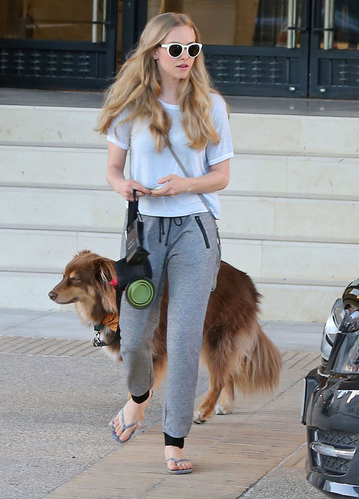 AMANDA SEYFRIED and Her Dog Shopping in Beverly Hills 2110