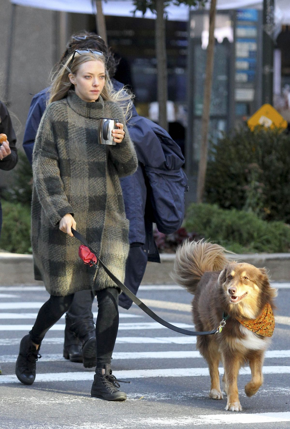 AMANDA SEYFRIED Walks Her Dog Finn Out in New York