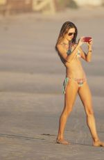 ALESSANDRA AMBROSIO in Bikini at a Beach in Malibu 0811