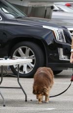 AMANDA SEYFRIE and Her Dog Finn Out and About in Los Angeles 3010