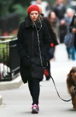 AMANDA SSEYFRIED and Her Dog Out in New York 1311