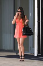 CLAUDIA ROMANI in Mini Dress Out and About in Miami 0411