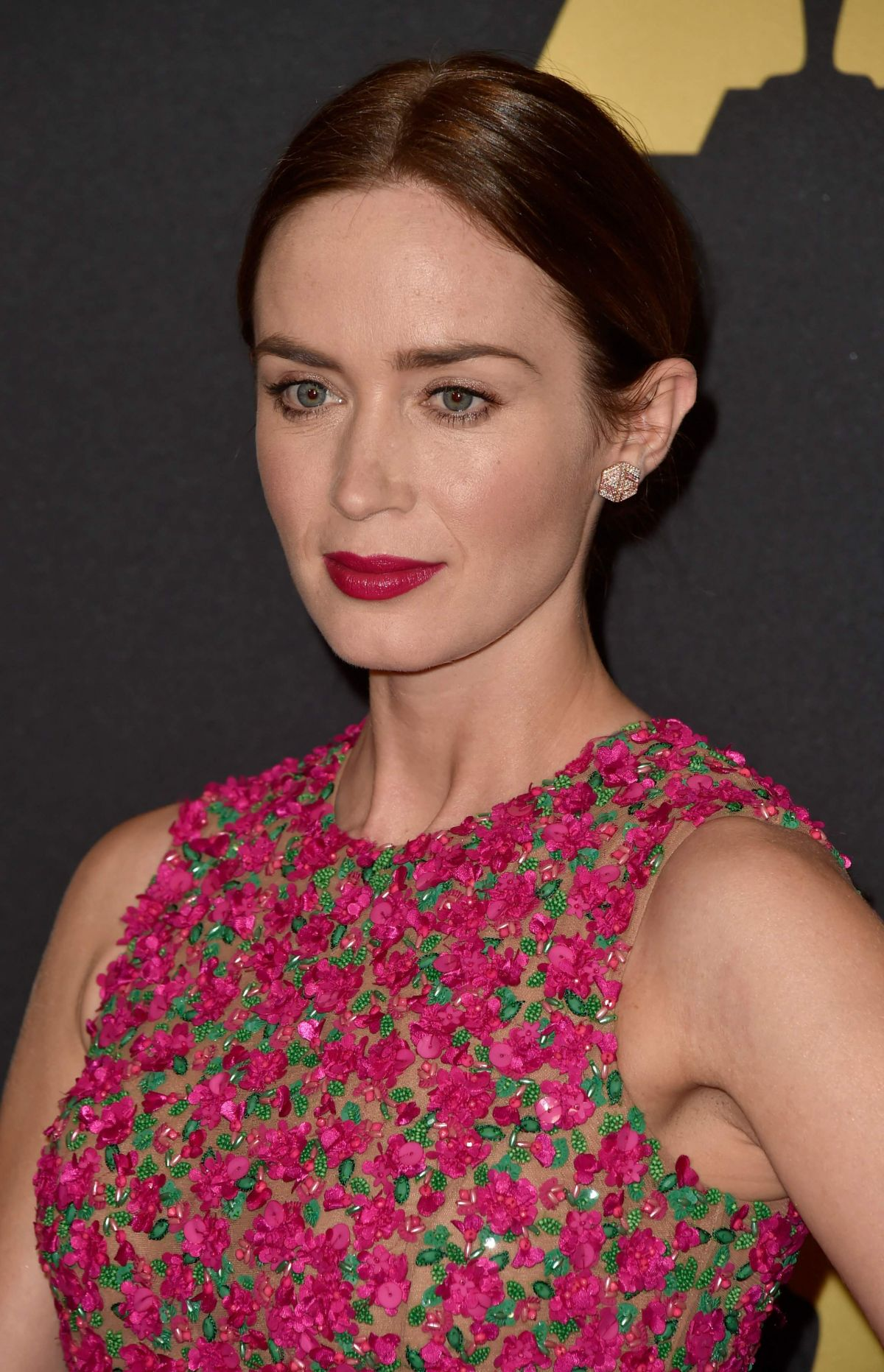 EMILY BLUNT at AMPAS 2014 Governor