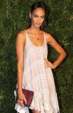 JOAN SMALLS at 2014 Cfda/Vogue Fashion Fund Awards in New York