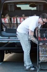 MEGAN FOX and Brian Austin Green Out for Grocery Shopping in Los Angeles