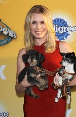 REBECCA ROMIJN at Fox's Cause for Pawns an All-Star Dog Event in Santa Monica
