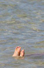 TARA REID in Bikini on the Beach in Hawaii