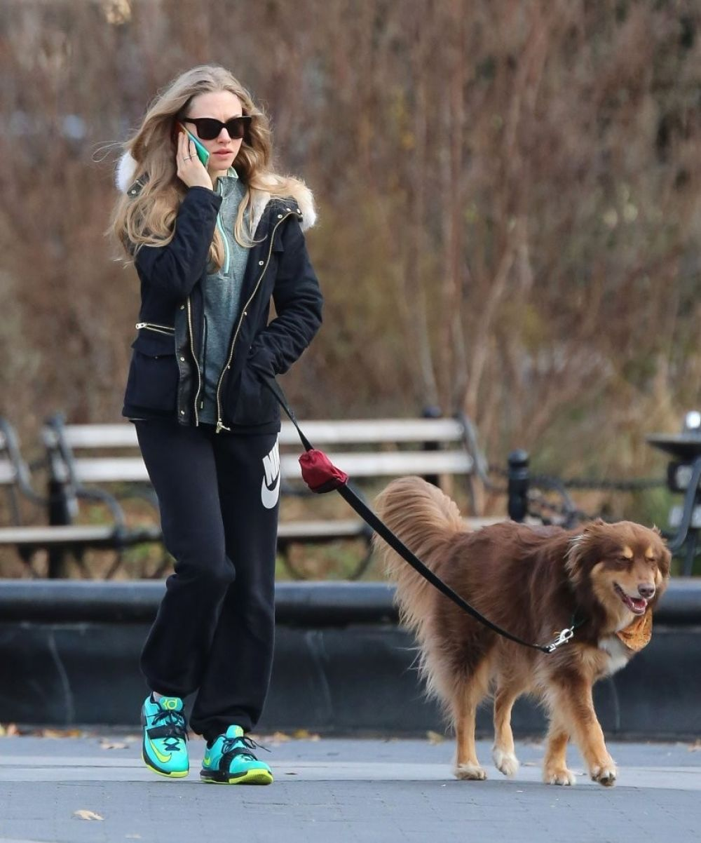 AMANDA SEYFRIED and Finn Out and About in New York 0412