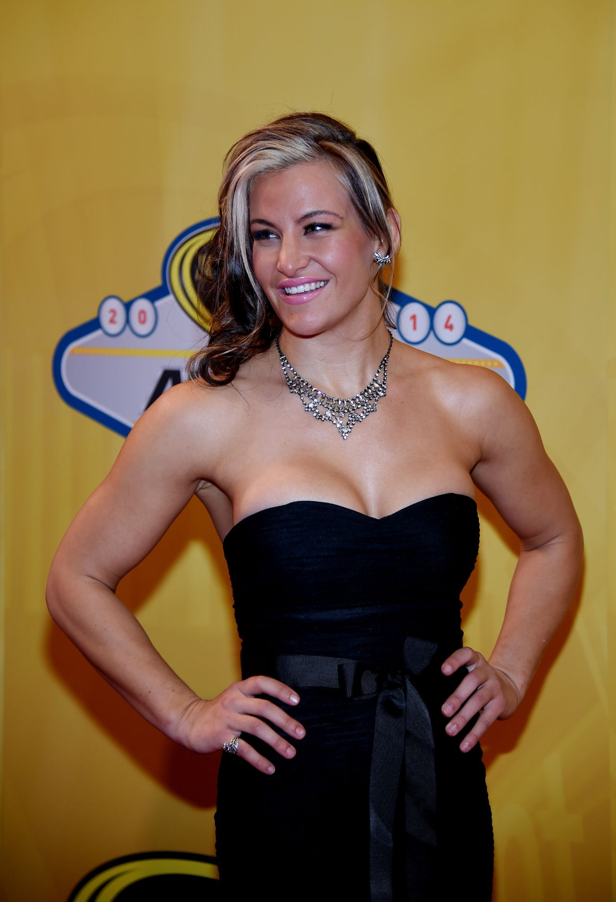 MEISHA TATE at 2014 Nascar Sprint Cup Series Awards in Las Vegas