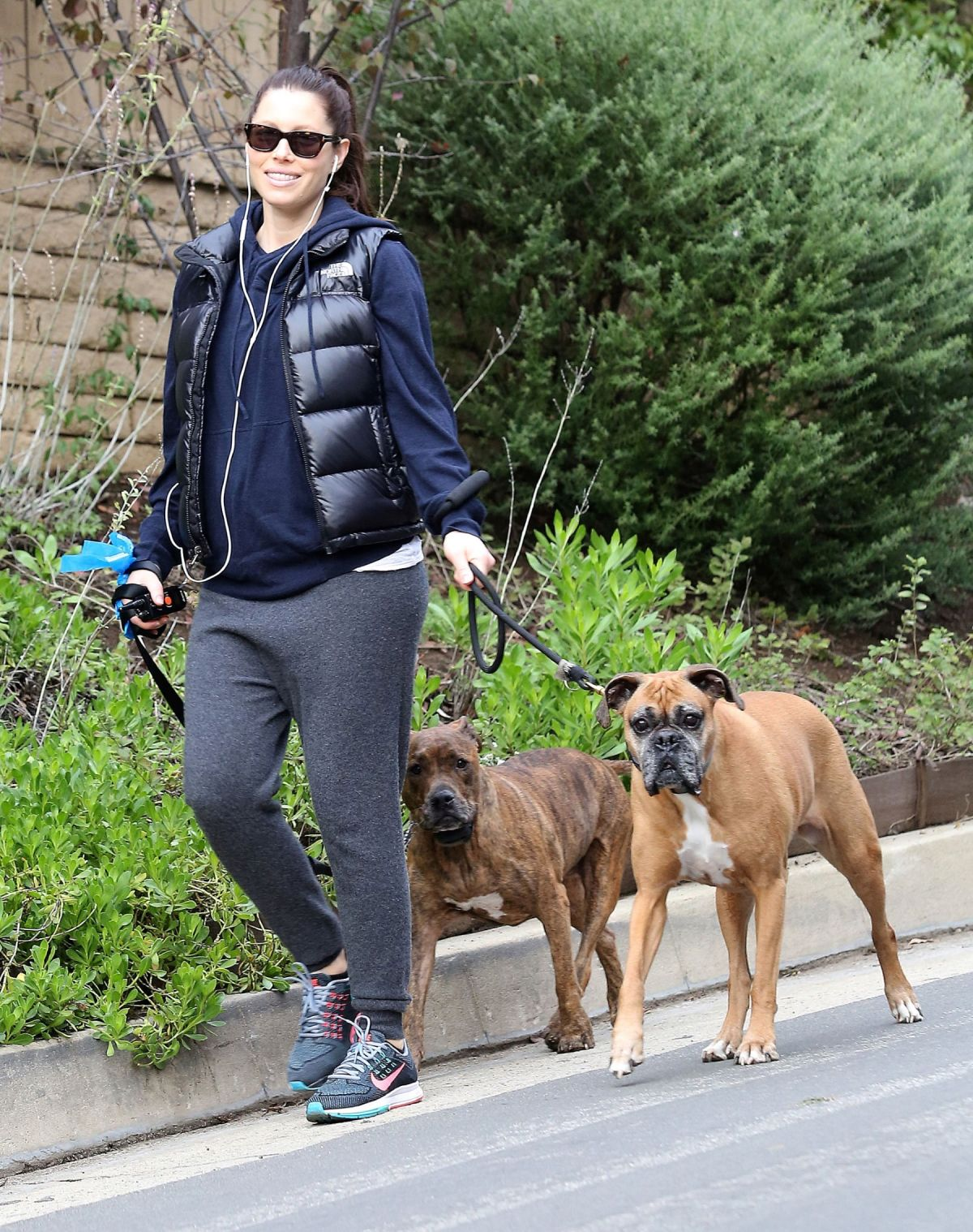 Pregnant JESSICA BIEL Walks Her Dogs Out in Hollywood