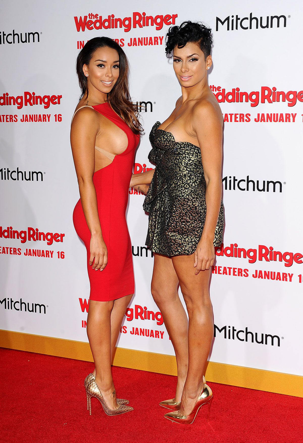 Gloria Govan At The Wedding Ringer Premiere In Hollywood Hawtcelebs