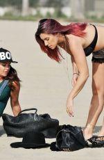 GABRIELLA ELLIS in Bikini at a Beach in Santa Monica