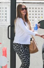 SOFIA VERGARA in tights Out and About in Hollywood 1102