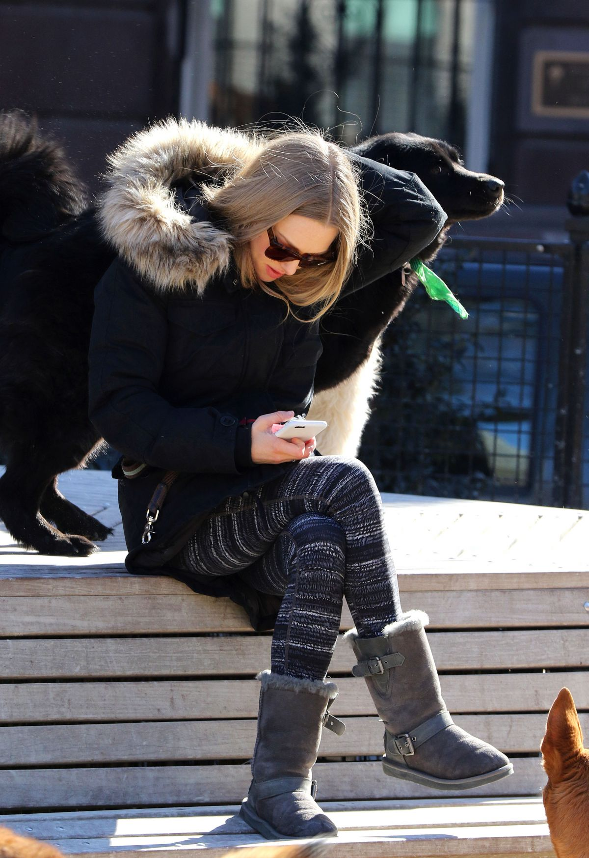 AMANDA SEYFRIED and Finn Out in New York 2203